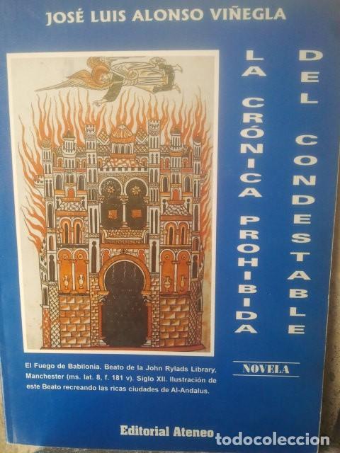 Libros de segunda mano: NOVELA HISTÓRICA - BUEN LOTE DE LIBROS - VER FOTOS - Foto 6 - 171498097