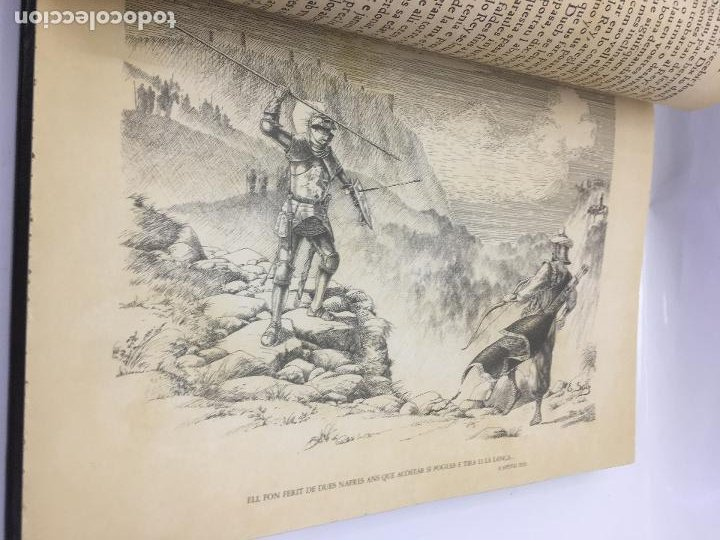 Libros de segunda mano: TIRANT LO BLANCH, DE JOHANOT MARTORELL I MARTI JHAN DE GALBA, 2 VOLUMEN, LUJOSOS Y EDICION NUMERADA - Foto 16 - 185925361