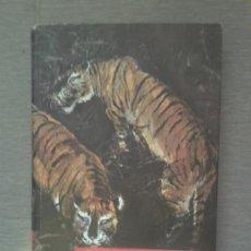 Libros de segunda mano: EN LOS JUNGLARES DE LA INDIA. SALGARI. Nº 53. Lote 37204889