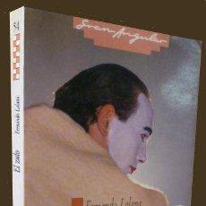 Libros de segunda mano: EL ZULO - FERNANDO LALANA - EDICIONES SM - 1991 - PREMIO GRAN ANGULAR 1984 - EXCELENTE. Lote 41025140