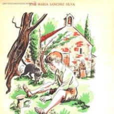 Libros de segunda mano: JOSÉ MARÍA SÁNCHEZ SILVA : MARCELINO PAN Y VINO (CIGÜEÑA, 1954) ILUSTRADO POR GOÑI. Lote 54722887