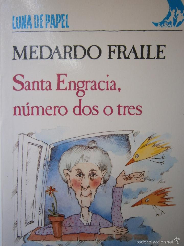 SANTA ENGRACIA NUMERO DOS O TRES MEDARDO FRAILE MABEL PIEROLA ANAYA 1 EDICION 1989 (Libros de Segunda Mano - Literatura Infantil y Juvenil - Novela)