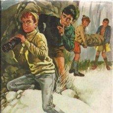 Libros de segunda mano: NOVELA JUVENIL ENID BLYTON. Lote 77177501
