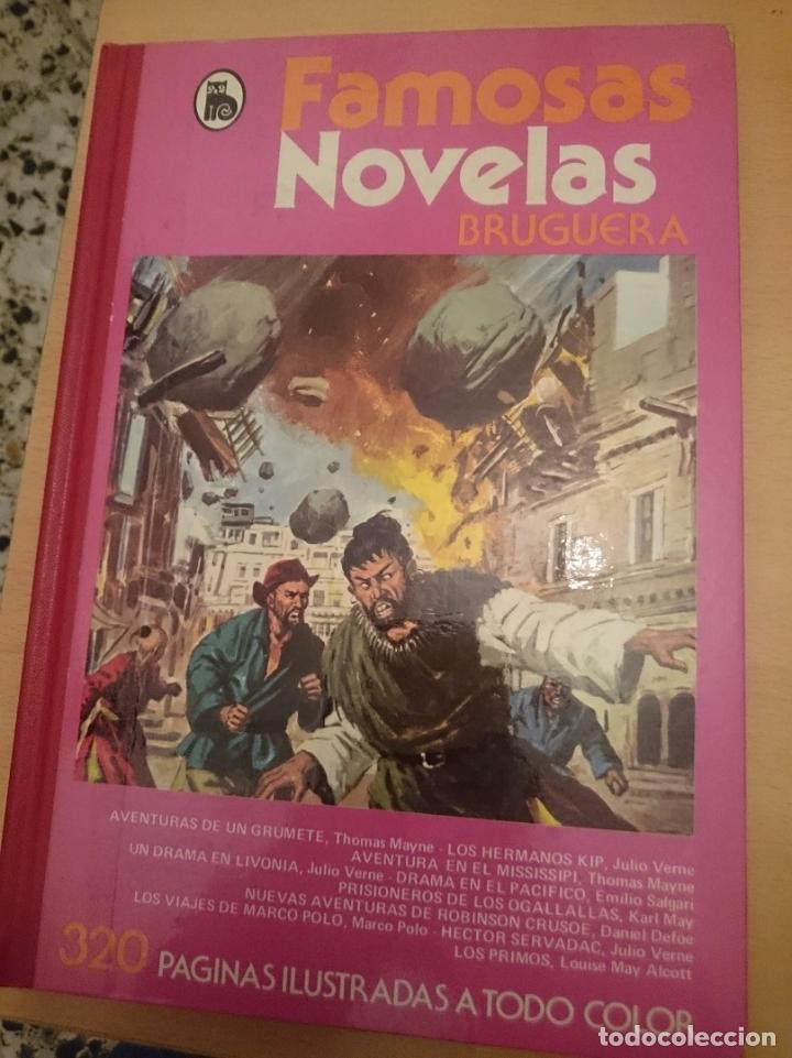 FAMOSAS NOVELAS - VOLUMEN XIII - VER FOTOS -REFMENOEN (Libros de Segunda Mano - Literatura Infantil y Juvenil - Novela)
