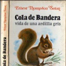 Libros de segunda mano: ERNEST THOMPSON SETON : COLA DE BANDERA - VIDA DE UNA ARDILLA GRIS (ARGOS VERGARA, 1979). Lote 84164576