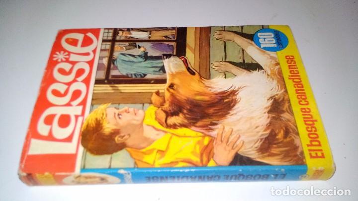EL BOSQUE CANADIENSE-LASSIE-COLECCIÓN HÉROES. 1966. 2ª EDICIÓN EDITORIAL BRUGUERA Nº 22-CON SOBRECUB (Libros de Segunda Mano - Literatura Infantil y Juvenil - Novela)