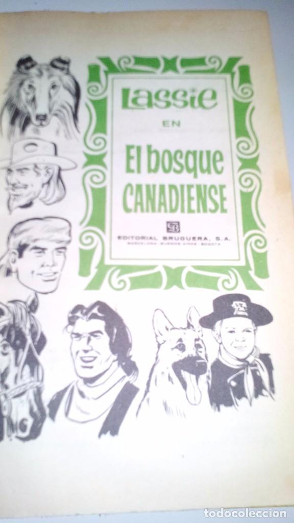Libros de segunda mano: EL BOSQUE CANADIENSE-Lassie-Colección Héroes. 1966. 2ª Edición Editorial Bruguera nº 22-CON SOBRECUB - Foto 4 - 105307355