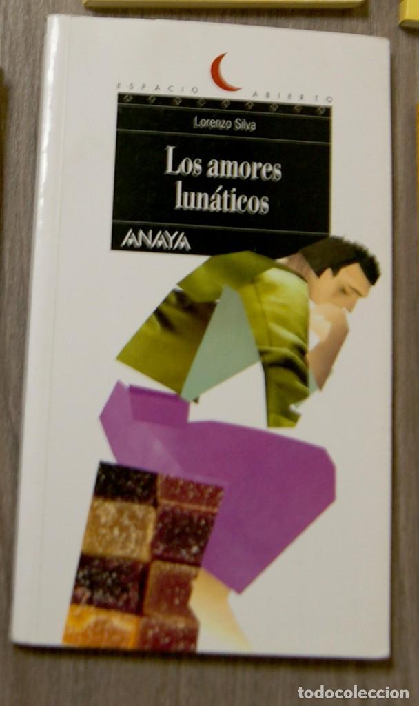 LOS AMORES LUNÁTICOS LORENZO SILVA (Libros de Segunda Mano - Literatura Infantil y Juvenil - Novela)