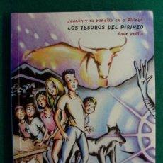 Libros de segunda mano: LOS TESOROS DEL PIRINEO / ASUN VELILLA / 1ª EDICIÓN 2004. EDITORIAL PIRINEO. Lote 133601234