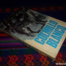 Libros de segunda mano: BUEN ESTADO CON SOBRECUBIERTAS, COLMILLO BLANCO DE JACK LONDON. MOLINO Nº 19. 1967. . Lote 139942162