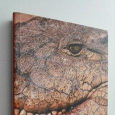 Libros de segunda mano: MEMORIA DE DRAGÓN - NEGRETE, JAVIER. Lote 145061254