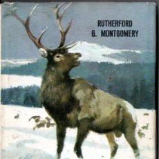 Libros de segunda mano: RUTHERFORD MONTGOMERY : WAPITI EL CIERVO (ANIMALES Y SELVA MOLINO, 1964). Lote 171336575