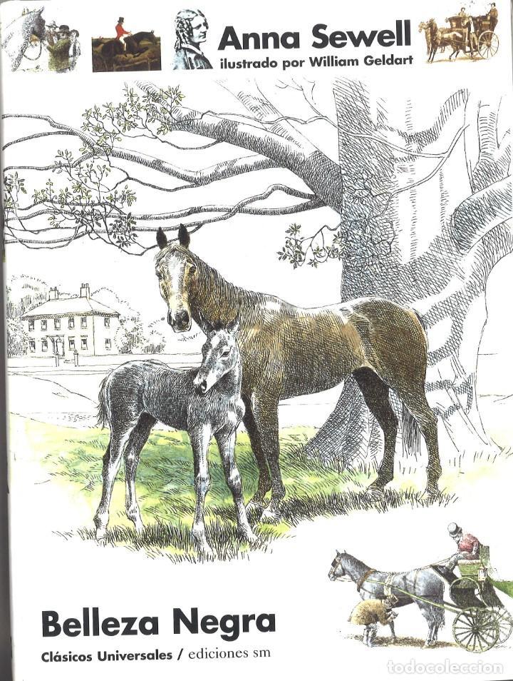 BELLEZA NEGRA. ANNA SEWELL. CLÁSICOS UNIVERSALES. SM. 2000 (Libros de Segunda Mano - Literatura Infantil y Juvenil - Novela)
