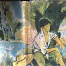 Libros de segunda mano: PLANAS BACH : MI VIDA EN EL LAGO (JOSÉ JANÉS, 1948) ILUSTRADO EN COLOR POR JUAN PALET. Lote 196327663