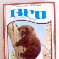 Libros de segunda mano: BRU EL OSO GRIS VIDA DE ANIMALES SALVAJES C.BERNARD RUTLEY NUMERO 1 MOLINO. Lote 209905866
