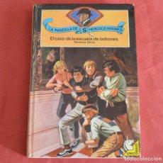 Libros de segunda mano: EL CASO DE LA ESCUELA DE LADRONES - LA PANDILLA DE SHERLOCK HOLMES - TERRANCE DICKS. Lote 218348820