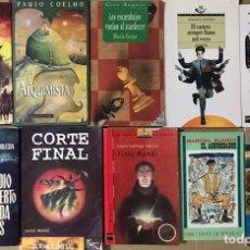 Libros de segunda mano: LOTE DE 30 LIBROS NOVELA JUVENIL - COLECCION VARIADA AVENTURAS CREPUSCULO MONSTER HIGH VAMPIRO ANAYA. Lote 209770408