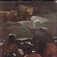 Libros de segunda mano: LOS MISTERIOS DE LA SELVA - SALGARI Nº 16 - EDITORIAL MOLINO 1955. Lote 268853294