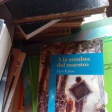 Libros de segunda mano: A LA SOMBRA DEL MAESTRO - JUAN FARIAS - EDITORIAL ALFAGUARA, 1995. Lote 295028218