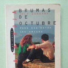 Libros de segunda mano: BRUMAS DE OCTUBRE. LOLA GANDARA. Lote 295498003