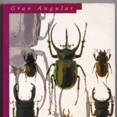 Libros de segunda mano: LOS ESCARABAJOS VUELAN AL ATARDECER - MARIA GRIPE - GRAN ANGULAR. Lote 234748050