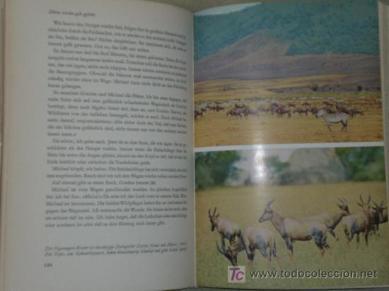 Libros de segunda mano: SERENGETI DARF NICHT STERBEN. 367000 tiere suchen einen staat. (EN ALEMÁN, CAZA VIAJES, 1959) - Foto 3 - 43158984