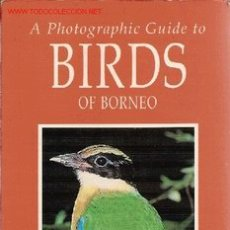 Libros de segunda mano: 'A PHOTOGRAPHIC GUIDE TO BIRDS OF BORNEO' (UNA GUÍA FOTOGRÁFICA DE PÁJAROS DE BORNEO). EN INGLÉS.. Lote 23092880