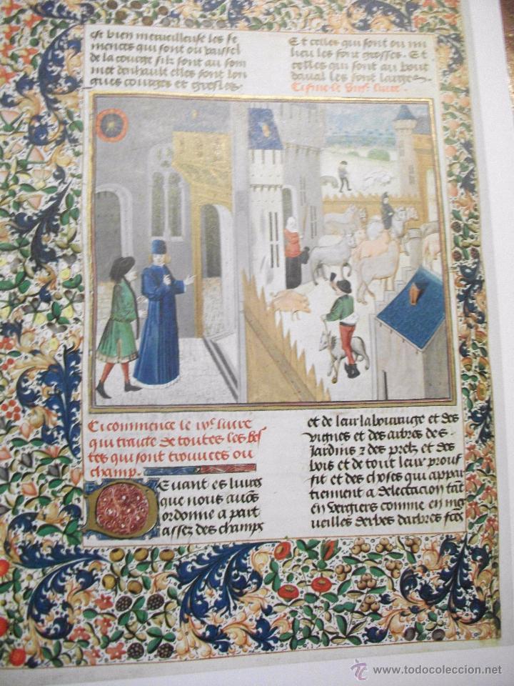 Libros de segunda mano: LES PROFITS CHAMPETRES DE PIERRE DE CRESCENTS - GANACIAS DEL CAMPO CON CAJA EN TELA LAMINAS 1965 - Foto 3 - 49703271