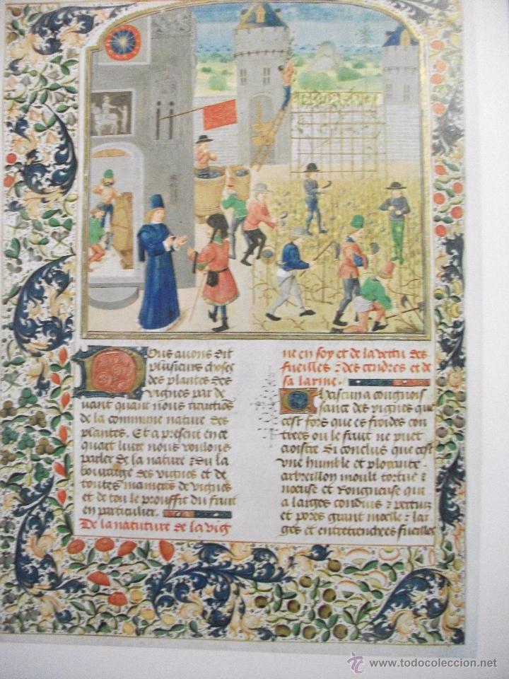 Libros de segunda mano: LES PROFITS CHAMPETRES DE PIERRE DE CRESCENTS - GANACIAS DEL CAMPO CON CAJA EN TELA LAMINAS 1965 - Foto 4 - 49703271