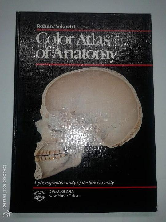 Color Atlas Of Anatomy 1983 Johannes W Rohen Buy Books In Other