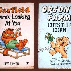 Libros de segunda mano: DOS LIBROS DE GARFIELD EN IDIOMA INGLÉS POR JIM DAVIS DE RAVETTE BOOKS EN GREAT BRITAIN 1989. Lote 125852491