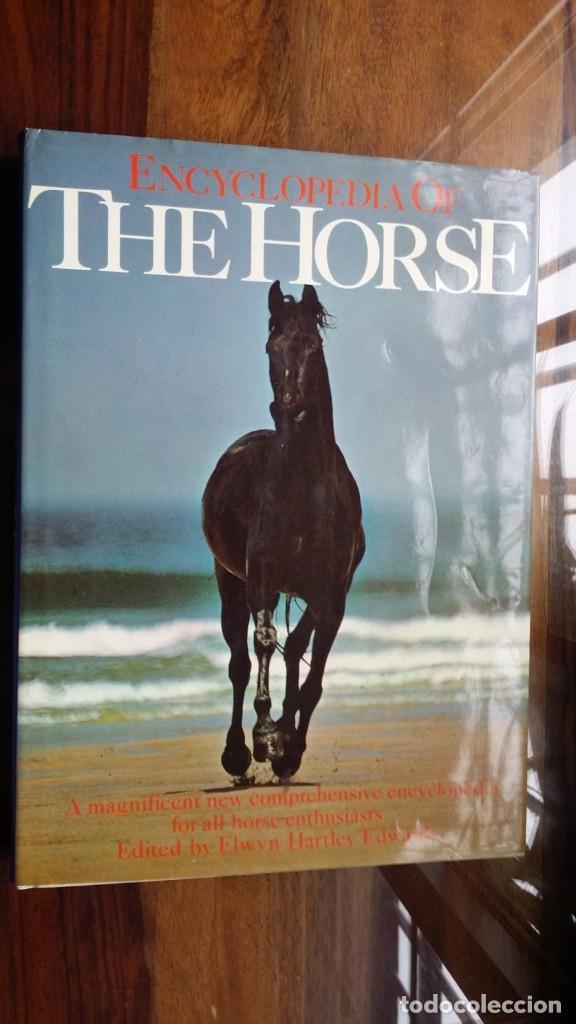 ENCYCLOPEDIA OF THE HORSE (Libros de Segunda Mano - Otros Idiomas)