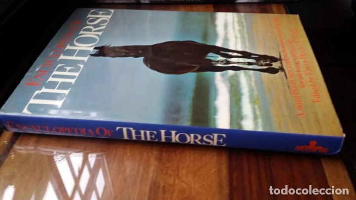 Libros de segunda mano: Encyclopedia of the horse - Foto 2 - 138963294