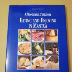 Libros de segunda mano: EATING AND ENJOYING IN MANTUA (GIOVANNI URBANI). Lote 170386956