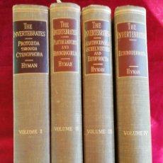 Libros de segunda mano: THE INVERTEBRATES: PROTOZOA THROUGH CTENOPHORA. MCGRAW-HILL. INGLÉS.. Lote 172745973