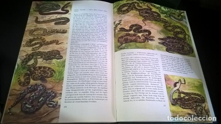 Libros de segunda mano: ENZYKLOPADIE DER TIERE. WILHELM EIGENER. GEORG WESTERMANN VERLAG. 2 TOMOS. EN ALEMAN. - Foto 2 - 174064850