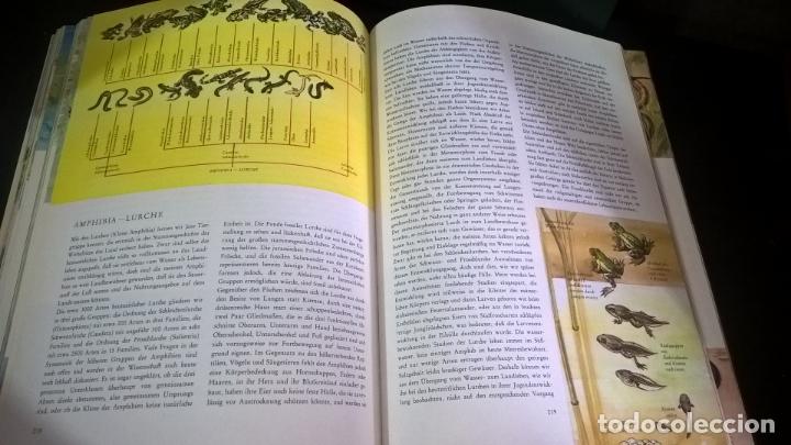 Libros de segunda mano: ENZYKLOPADIE DER TIERE. WILHELM EIGENER. GEORG WESTERMANN VERLAG. 2 TOMOS. EN ALEMAN. - Foto 3 - 174064850