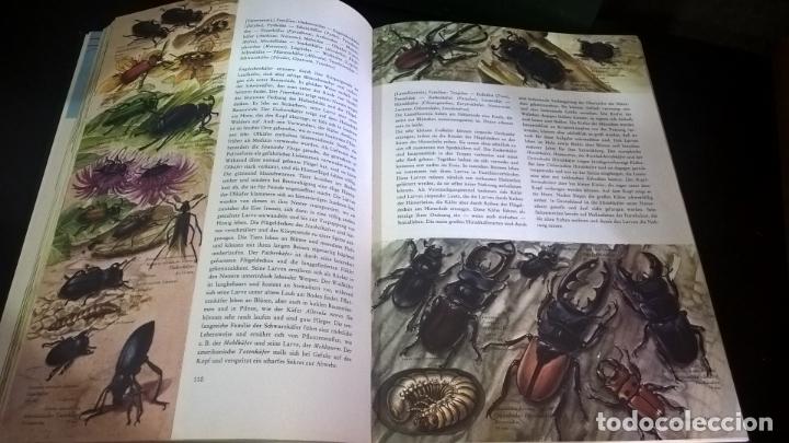 Libros de segunda mano: ENZYKLOPADIE DER TIERE. WILHELM EIGENER. GEORG WESTERMANN VERLAG. 2 TOMOS. EN ALEMAN. - Foto 5 - 174064850