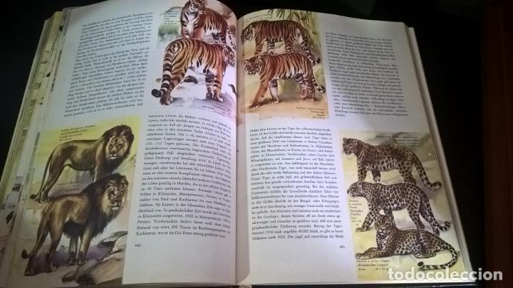 Libros de segunda mano: ENZYKLOPADIE DER TIERE. WILHELM EIGENER. GEORG WESTERMANN VERLAG. 2 TOMOS. EN ALEMAN. - Foto 14 - 174064850
