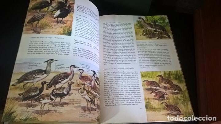 Libros de segunda mano: ENZYKLOPADIE DER TIERE. WILHELM EIGENER. GEORG WESTERMANN VERLAG. 2 TOMOS. EN ALEMAN. - Foto 16 - 174064850