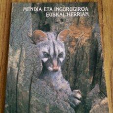 Libros de segunda mano: MENDIA ETA INGURUGIROA - EUSKAL HERRIAN - ED. GOBIERNO VASCO 1994 . Lote 177824848