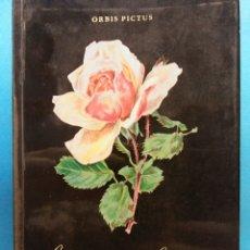 Livros em segunda mão: BEAUTÉ DE LA ROSE. PAYOT LAUSANNE. ORBIS PICTUS VOLUME 2. Lote 179222328