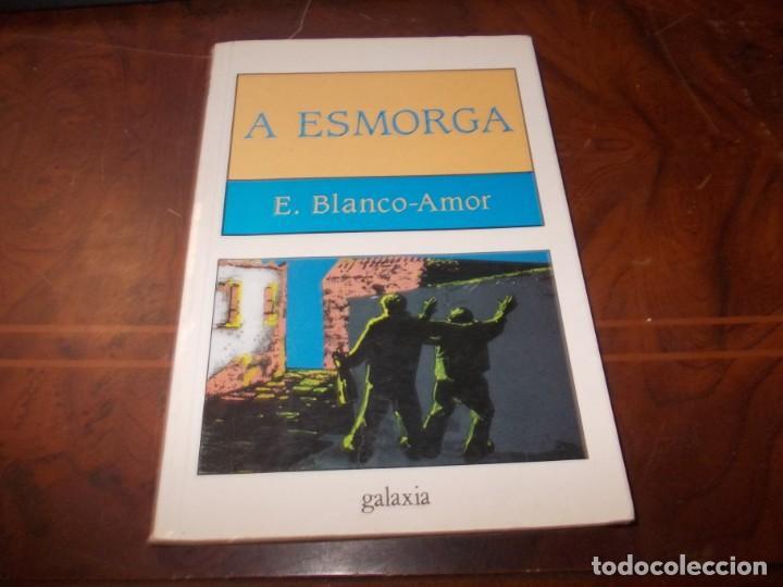 A ESMORGA, E. BLANCO AMOR. GALAXIA 16ª ED. DECEMBRO 1.996, DEFECTUOSO (Libros de Segunda Mano - Otros Idiomas)