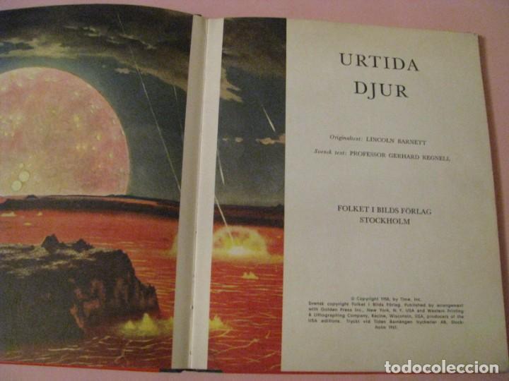 Libros de segunda mano: URTIDA DJUR. EN SUECO. LINCOLN BARNETT. TRADUCIDO POR GERHARD REGNELL. ANIMALES PREHISTÓRICOS. 1961. - Foto 2 - 203293093