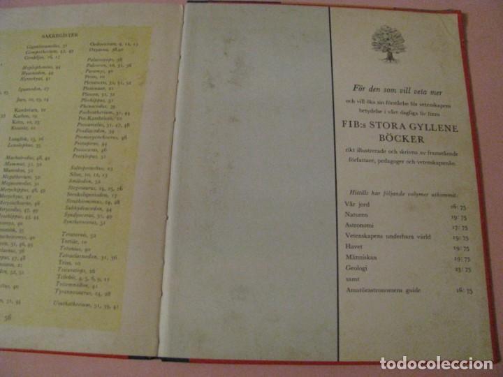 Libros de segunda mano: URTIDA DJUR. EN SUECO. LINCOLN BARNETT. TRADUCIDO POR GERHARD REGNELL. ANIMALES PREHISTÓRICOS. 1961. - Foto 4 - 203293093