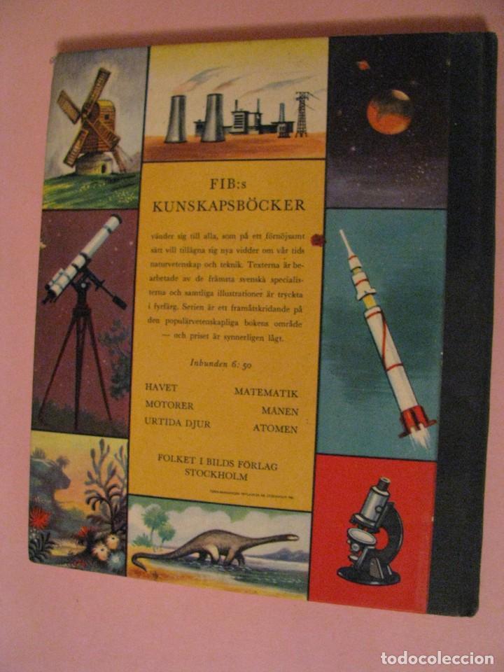 Libros de segunda mano: URTIDA DJUR. EN SUECO. LINCOLN BARNETT. TRADUCIDO POR GERHARD REGNELL. ANIMALES PREHISTÓRICOS. 1961. - Foto 5 - 203293093
