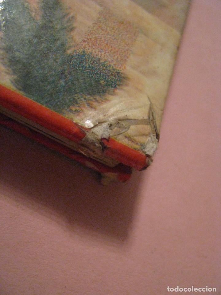 Libros de segunda mano: URTIDA DJUR. EN SUECO. LINCOLN BARNETT. TRADUCIDO POR GERHARD REGNELL. ANIMALES PREHISTÓRICOS. 1961. - Foto 6 - 203293093