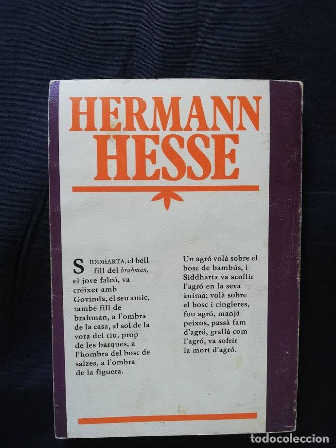 Libros de segunda mano: Siddhartha - Hermann Hesse (En catalán) - Foto 2 - 205528276