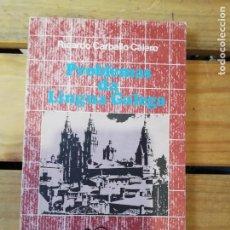 Libros de segunda mano: PROBLEMAS DA LÍNGUA GALEGA. RICARDO CARBALLO CALERO. 1ª EDICIÓN. Lote 218875751