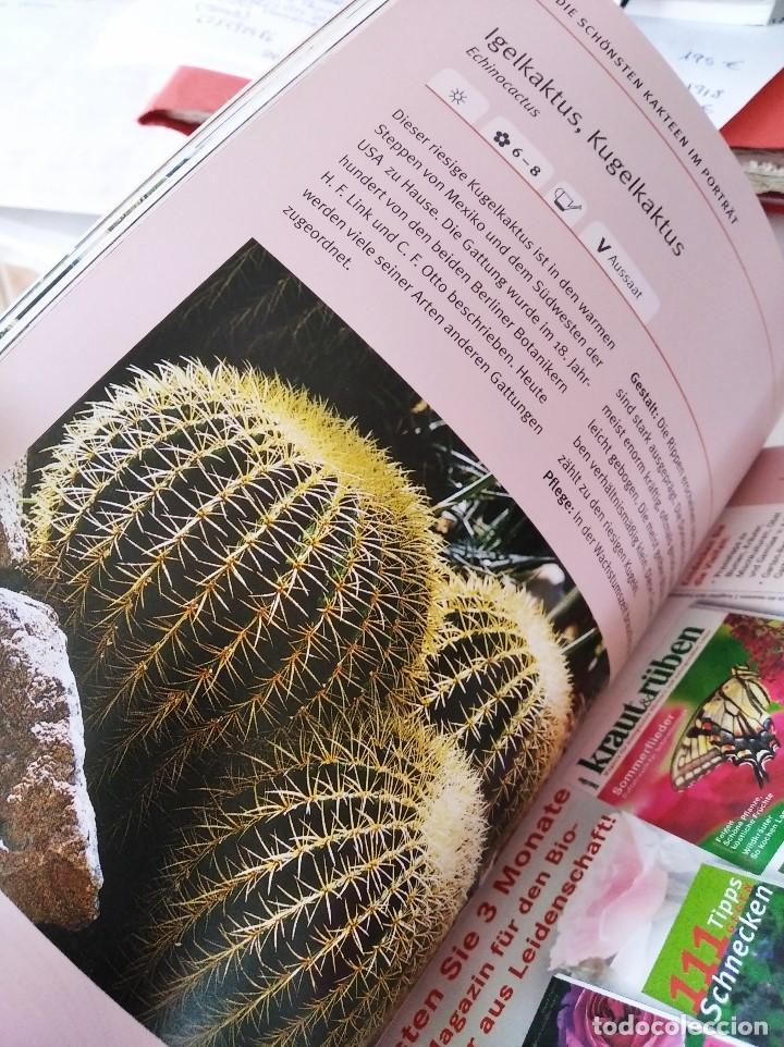 Libros de segunda mano: KAKTEEN UND SUKKULENTEN (Cactus y Suculentas) - Foto 2 - 223447275